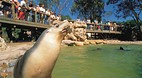 Adelaide Zoo