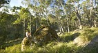 Barrington Tops Nati..