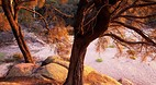 Freycinet National P..