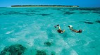Heron Island