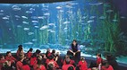 Melbourne Aquarium