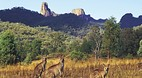 Warrumbungle Nationa..