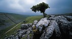 Malham