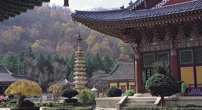 woljeongsa-temple-57376.jpg