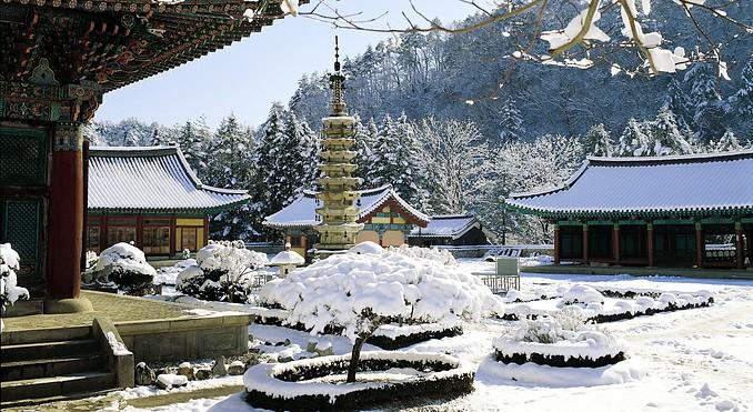 woljeongsa-temple-57394.jpg