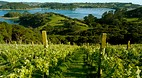 Waiheke Island
