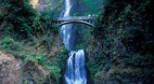 Multnomah Falls - Tr..